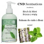 CND SCENTSATIONS 245ML BIRCH & MINT